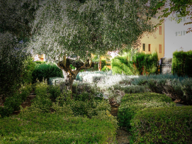 jardines 16